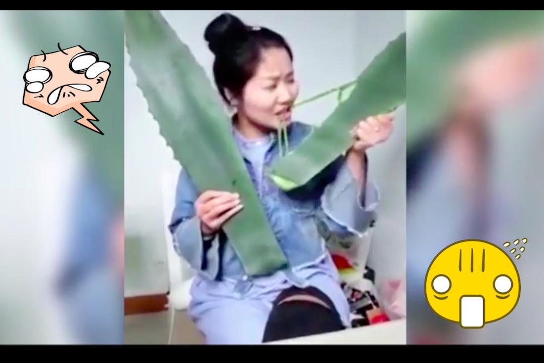 Vlogerka otruła się rośliną podczas livestreamu i trafiła do szpitala!