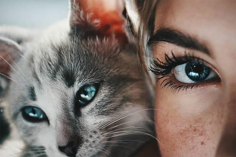 QUIZ: Jakie domowe zwierzątko najbardziej do Ciebie pasuje?