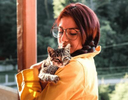 6 zalet posiadania kota – zobacz, dlaczego warto mieć mruczka!