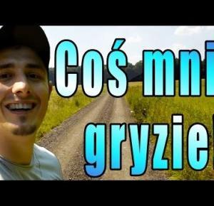 Coś mnie gryzie! | Vlog #1