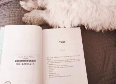 natdi_ve: WIĘCEJ NIŻ MY - Recenzja książki