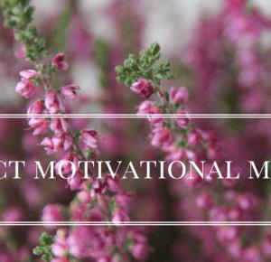 roxen94: project motivational monday