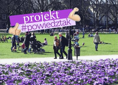 Projekt #powiedztak - 96pln