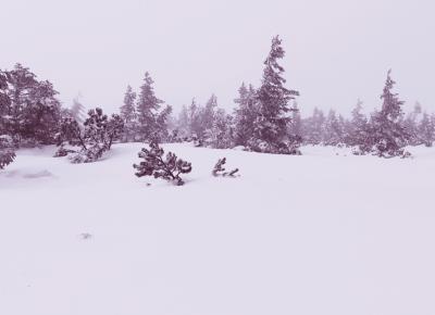 Winter x me