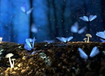 Wyobraźnia pisarza – Szmaragdowe pióro