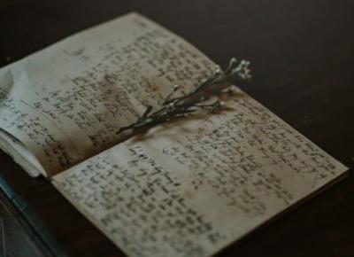 Księga o imieniu Vella – Szmaragdowe pióro