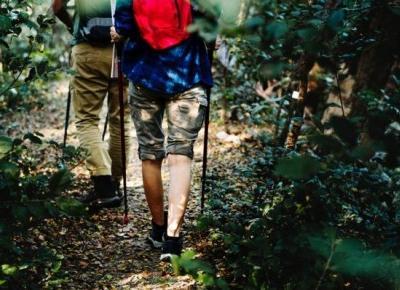 Mentor potrzebny od zaraz – Szmaragdowe pióro