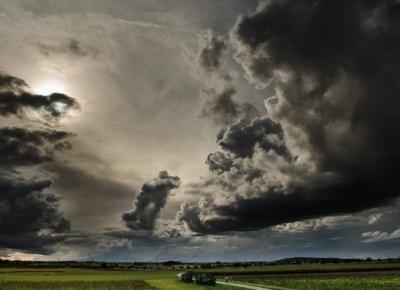 Przetrwać burzę — recenzja Ocalonej aby mówić