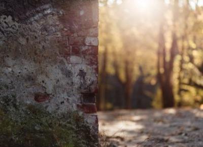 Opowiadanie z murku – Szmaragdowe pióro