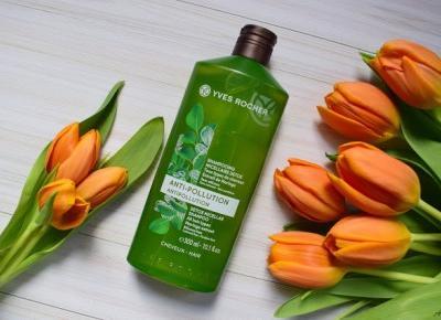 Detoksykujący szampon micelarny Yves Rocher | Anszpi