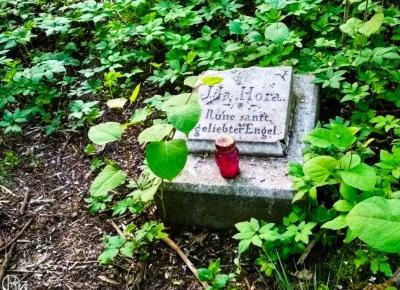Ida Hora – samotny grób