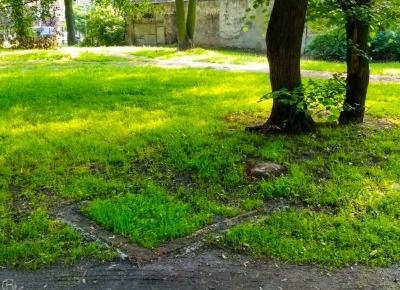 Zapomniany cmentarz w centrum miasta