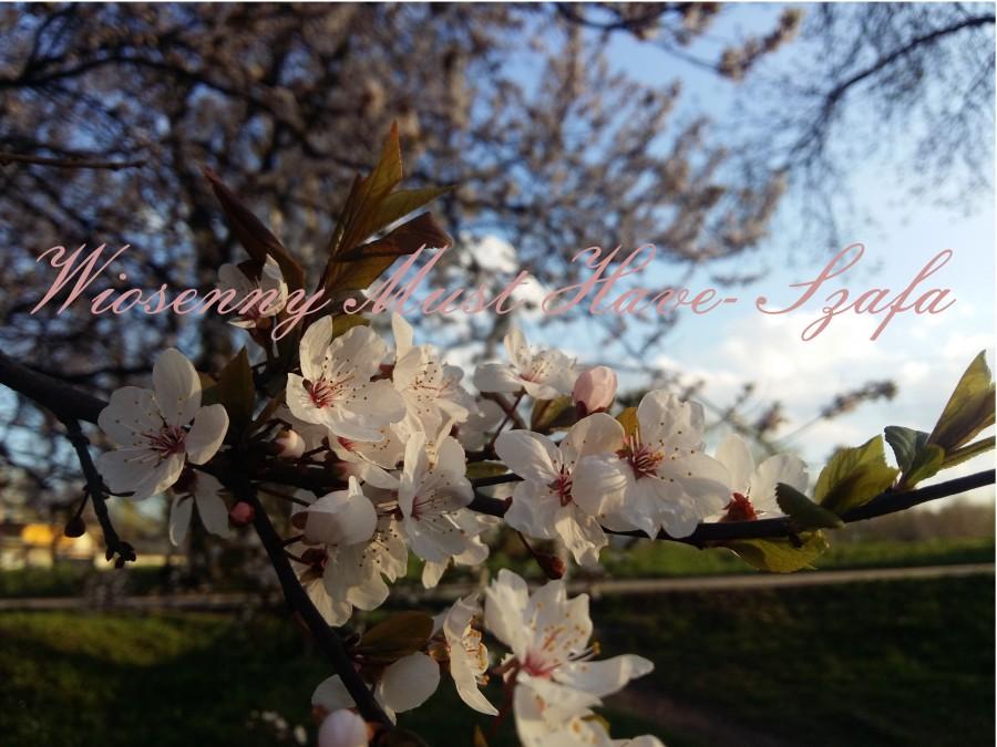 Wiosenny Must Have- Szafa, czyli czego nie może zabraknąć w mojej szafie na wiosnę