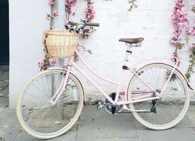 Wycieczka rowerowa - o co warto zadbac jadac w trase? Poradnik - StylRoom