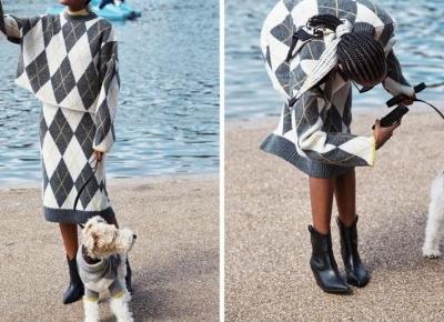 Ubierz się jak twój zwierzak ! Nowa Kolekcja H&M