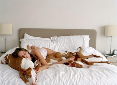 Lepiej spać z psem niż z drugą osobą.