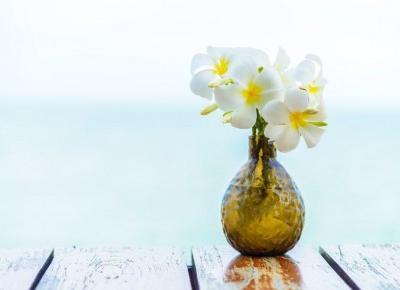 Cosmetics reviews : Pięć perfum z nutą zapachową jaśminu