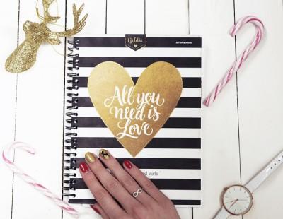 209. Jak zorganizować swoje życie blogowe? DIY: planer blogowy - Ada Zet