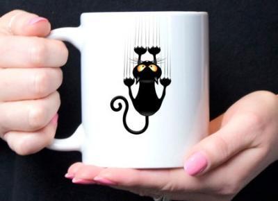 Czy czarny kot przynosi pecha?