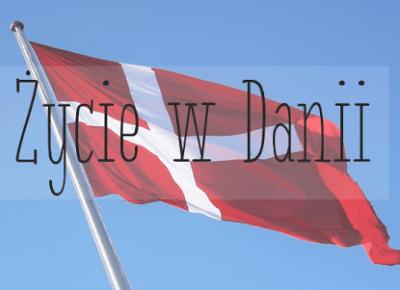 | Życie w Danii - Kilka informacji | - Cup of Bunny