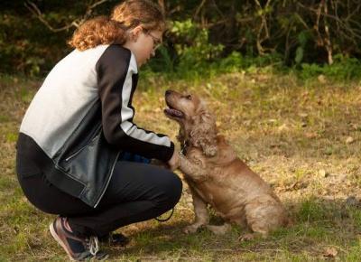 Czy psy odczytują ludzkie emocje? - Dama w błocie