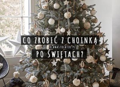 Co zrobić z choinką po Świętach? | DlaNastolatek.pl
