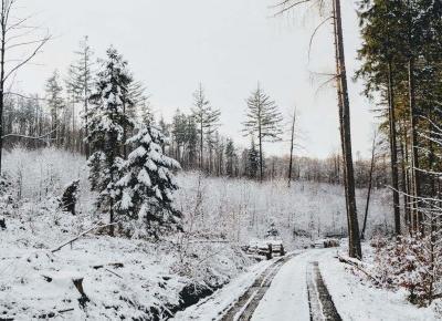 Czy powrót do Polski z emigracji to dobry pomysł? | Wposzukiwaniu.pl