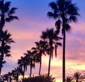 CZEGO SIĘ NIE MÓWI O WIELKIM LOS ANGELES | W poszukiwaniu końca świata
