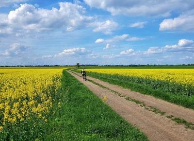 Gdzie wyjechać na weekend w Polsce - pomysły na wycieczki