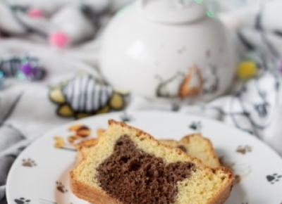 Najlepsze biszkoptowe ciasto z mąką kokosową na Dzień Kota 2018 - Fitkot