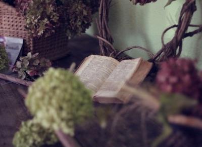 The Story of Books, czyli jak wydać książkę? | Gosiarella