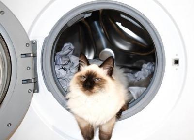 Na co się nie nabrać przy wyborze pralki?