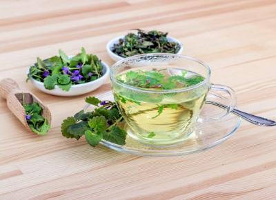 Co warto wiedzieć o ziołach? Naturalne dbanie o zdrowie