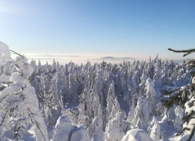 """Hela Bielska on Instagram: """"❄️#winter #ferie #narty #polskiegóry #góry #ddobinsta #ddob #holidays #szczyrk #beautyful #mountains #views #cold #snow ❄️"""""""