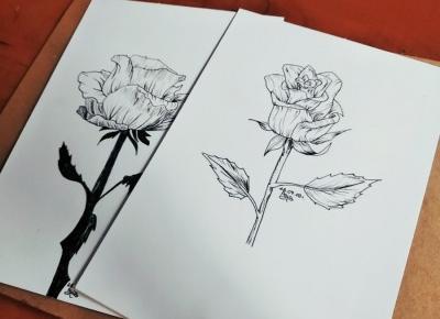 Ostatnie rysunki