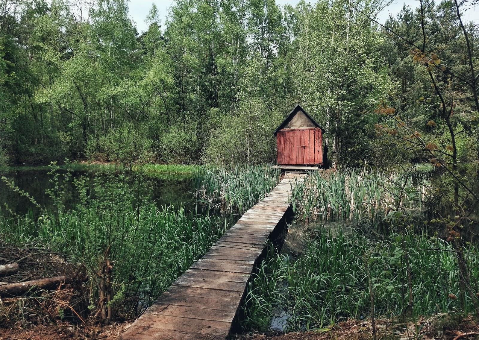 Judy's World: Pojezierze Palowickie, Chatka Shreka, Gichta i więcej atrakcji na trasie rowerowej