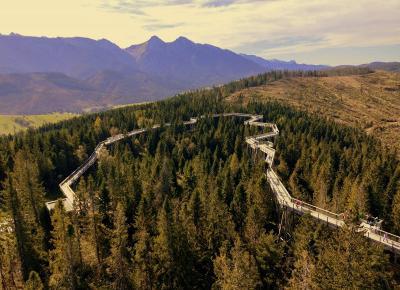 Judy's World: Chodnik korunami stromov - Bachledova Dolina