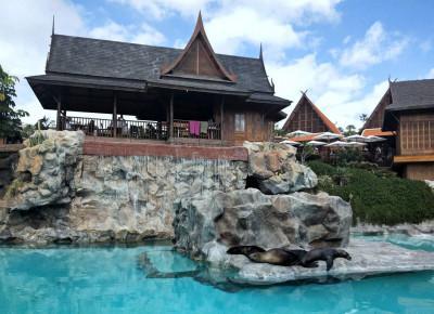 Judy's World: Siam Park - świetna zabawa