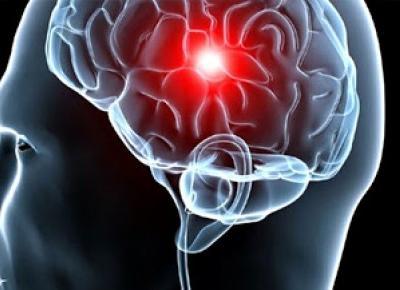 Budzenie umysłu - dzień po dniu: W głąb mózgu