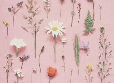 Simple Happiness : Kosmetyczne panacea