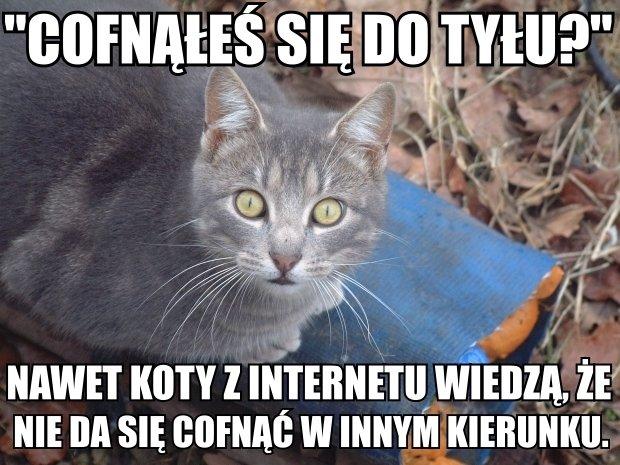 Kartka Strony: Język polski bardzo trudna...#2