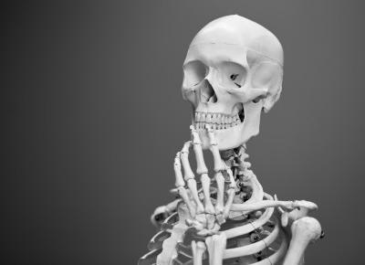 Anatomia na medycynie, czyli kiedy ekscytacja walczy ze strachem. – Kulturopatka