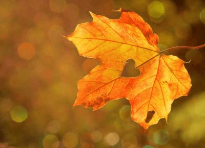 20 rzeczy do zrobienia jesienią - Pomysły i inspiracje na to co robić jesienią