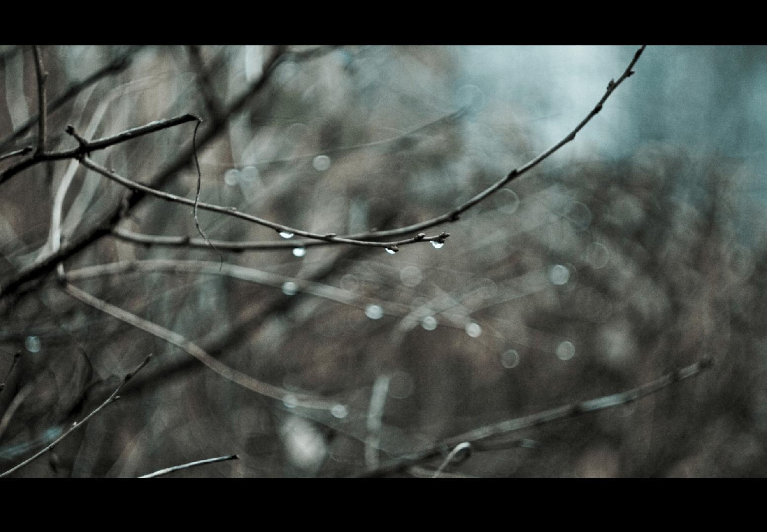 Lipcowa : Deszcze Jesienny według Leopolda Staffa