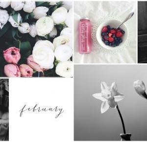 MYstuff: HELLO FEBRUARY