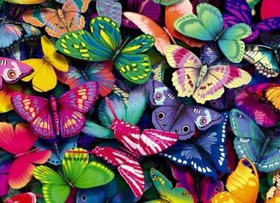 Myśli jak Motyle