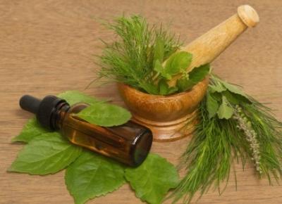 4 zioła, których warto używać w pielęgnacji ciała - Malinowe C.