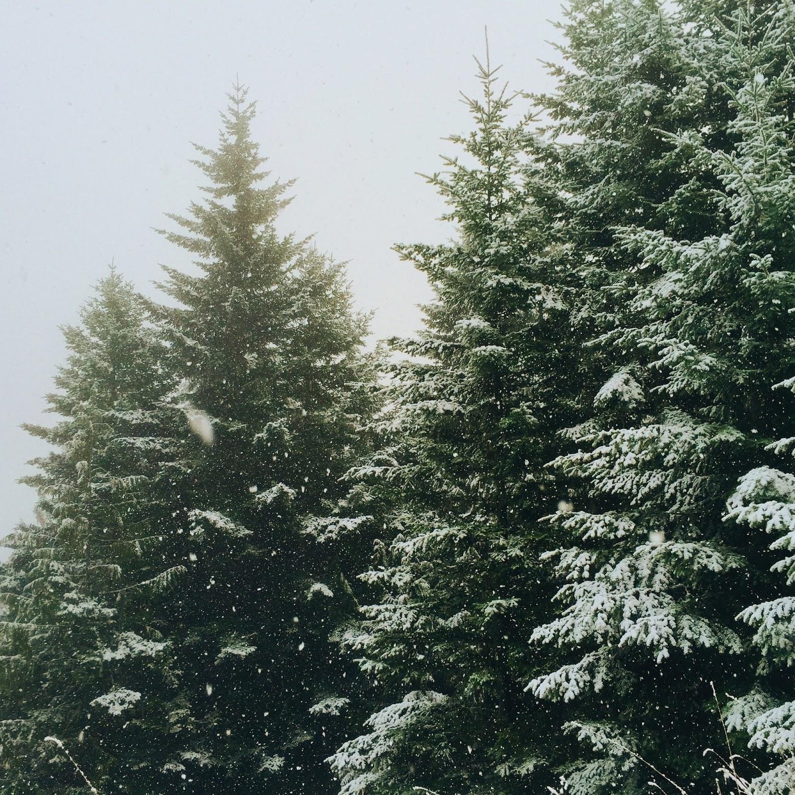 Mar  Lena: Jak radzić sobie z zimnymi miesiącami