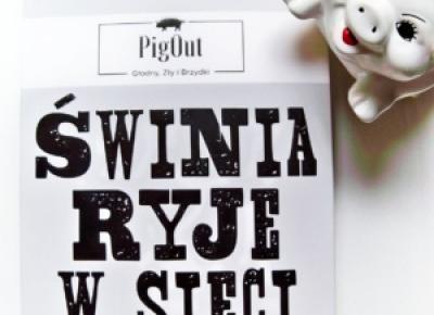 Świnia ryje w sieci, czyli z pamiętnika hejtera - świńska recenzja