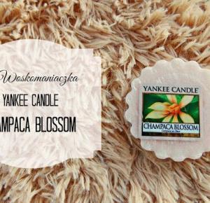 marysia: #Woskomaniaczka: Yankee Candle Champaca Blossom ROZDANIE